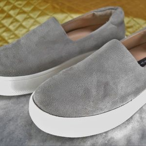 Steve Madden Hilda Gray Suede Fashion Sneakers NEW
